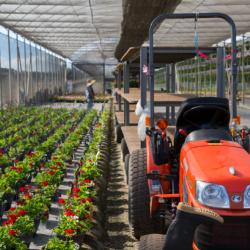 Định cư lao động EB-3 - Nature's Way farm