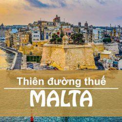 Chính sách thuế Malta lý tưởng cho nhà đầu tư như thế nào?