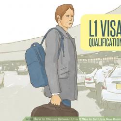 Visa L-1 và E-2 khác nhau thế nào đối với 2 loại visa doanh nhân sang Mỹ nhanh chóng