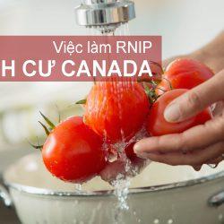 Việc làm RNIP Định cư Canada: Phụ bếp nhà hàng tại bang British Columbia