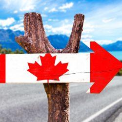 Các bước nhập cư Canada nhanh (Express Entry) cho doanh nhân