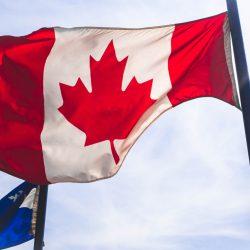 Giữa dịch Covid - 19, Canada cho phép người lao động nước ngoài đến làm việc