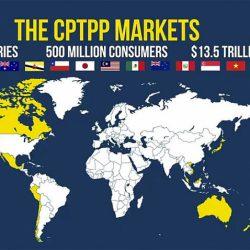 CPTPP – Bước 3 – Đảm bảo sản phẩm đáp ứng quy định về nguồn gốc