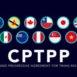 CPTPP – Bước 4 - Yêu cầu giảm thuế cho sản phẩm của bạn