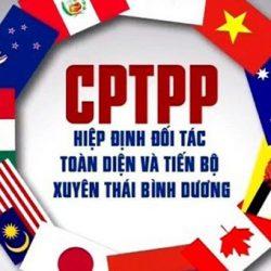 CPTPP – Bước 1 - Xác định & phân loại sản phẩm