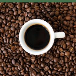 Kinh doanh thành công tại Mỹ: Sở hữu nhượng quyền thương mại Café